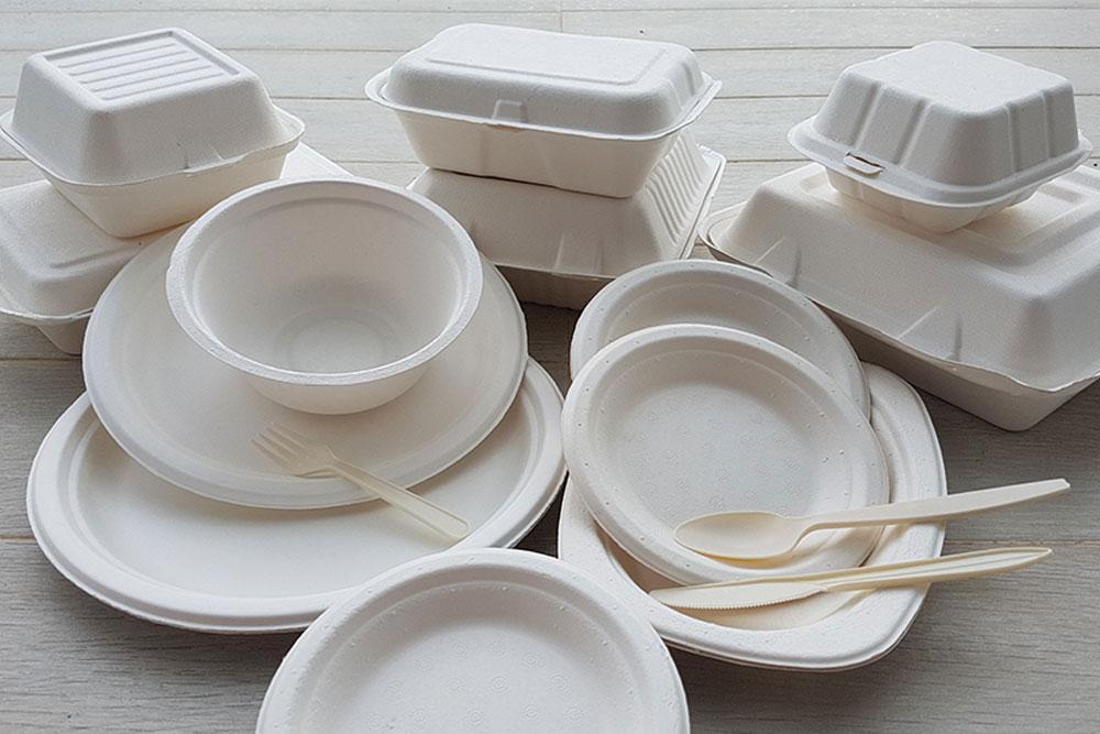 Biodegradable Biocorn Bowl