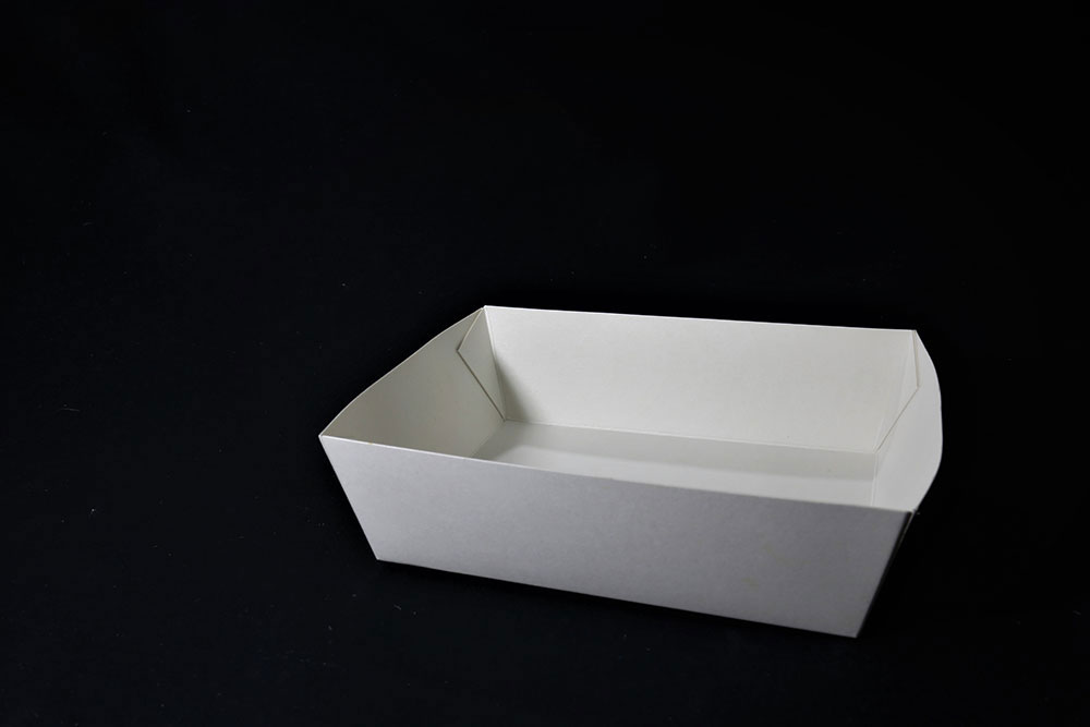 Paper Food Tray